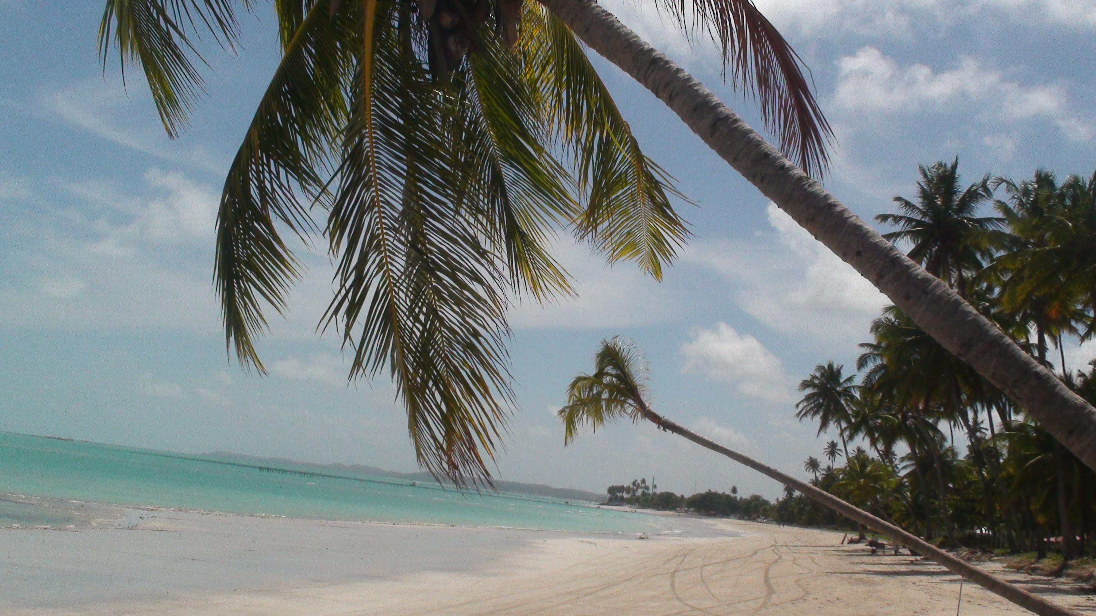 Dicas de viagem Alagoas Dicas de viagem maceio